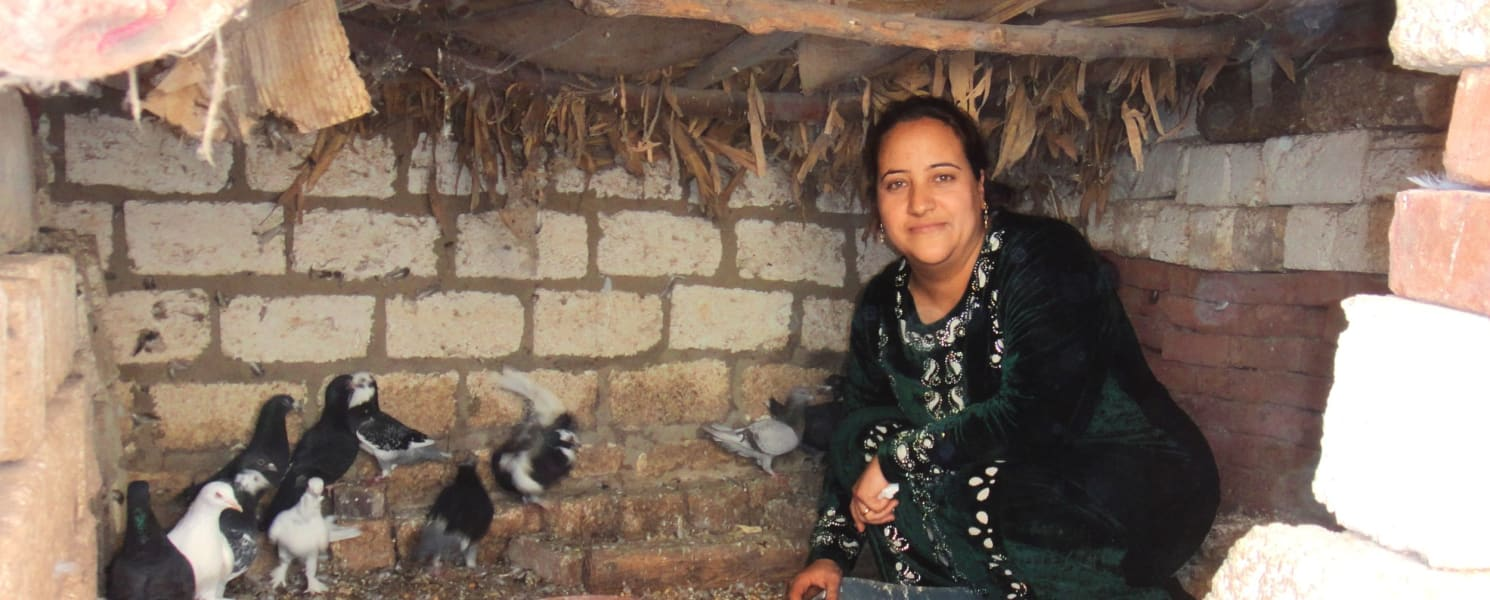Supporting Female Farmers in Upper Egypt to Improve Crop Yields and Income
